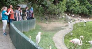 Kuala Lumpur Bird Park, Malaysia Top Most Popular Bird Sanctuaries in The World 2018