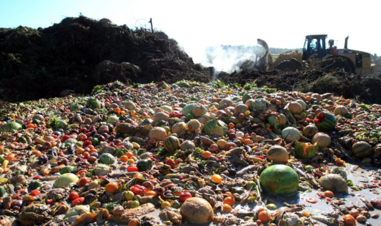Top food wastage countries