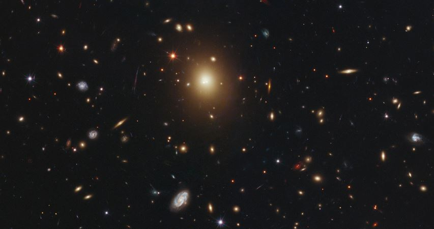 Largest Galaxies in Universe 2019