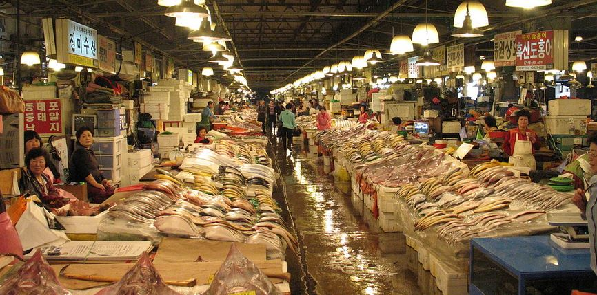 Largest fish markets in the world