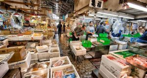 Tsukiji Fish Market Top Most Popular Fish Markets in The World 2018