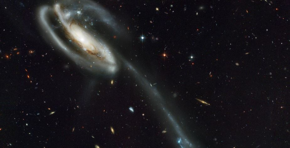 Largest Galaxies in Universe